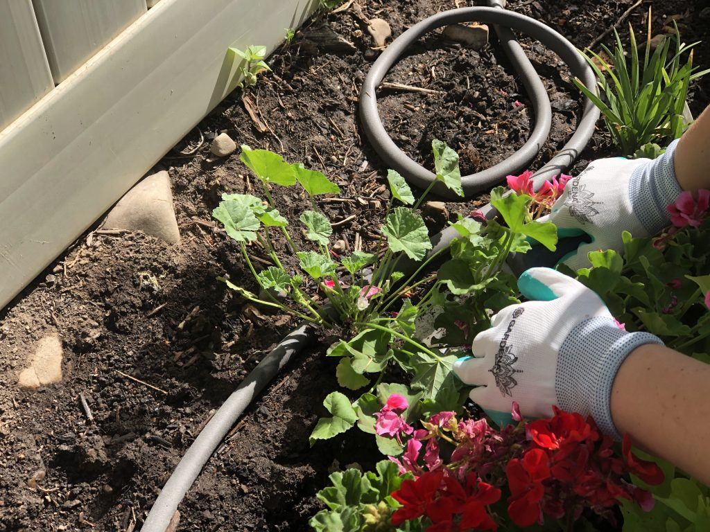 The Best gardening tool for weeding