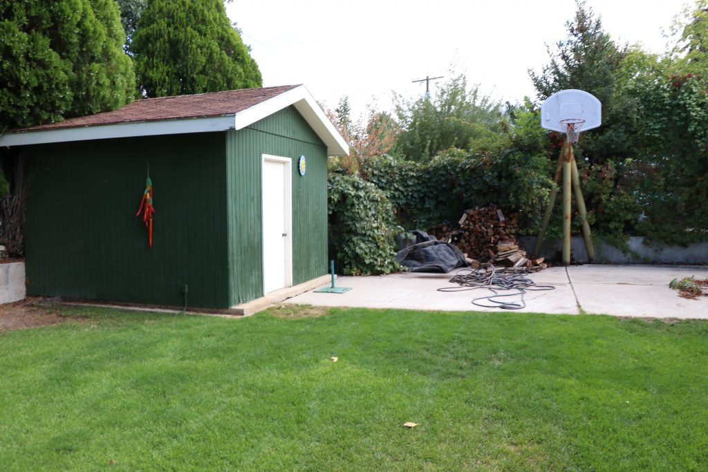 how to paint your outdoor shed - Before 2