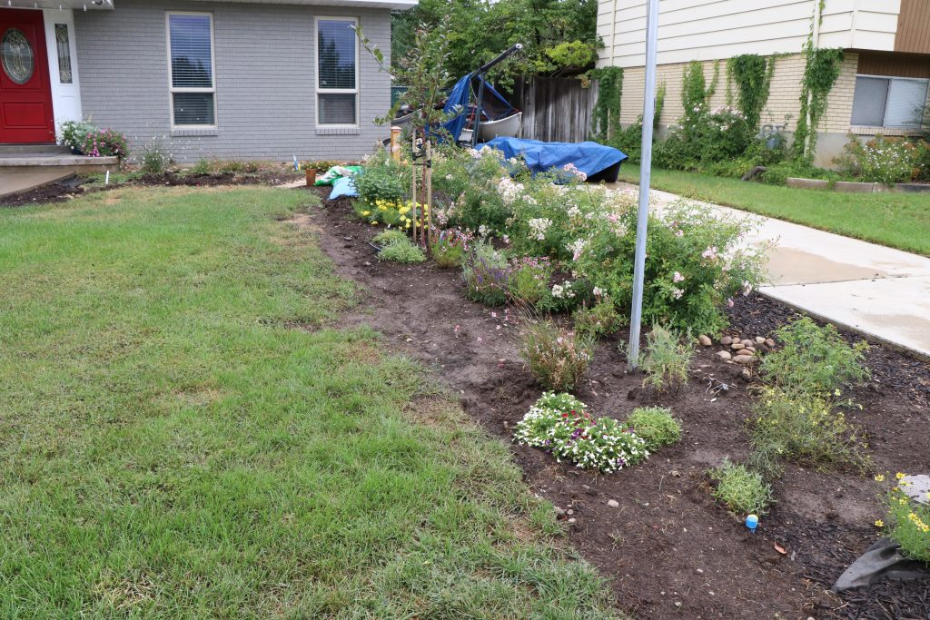 Before and After Garden Makeover 2019