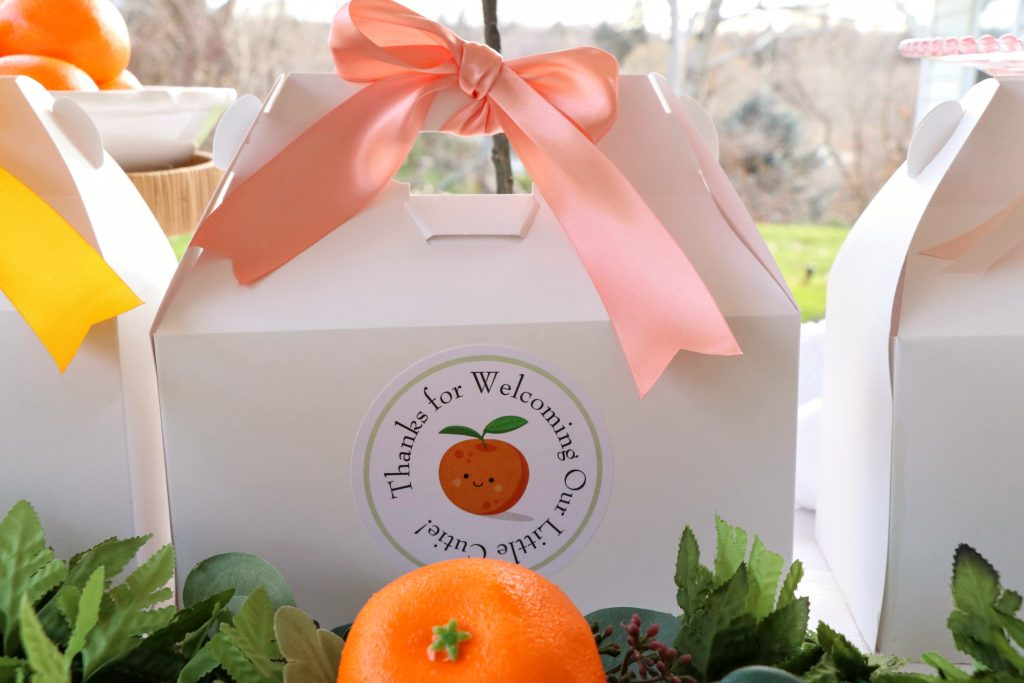 Baby Shower Lunch box to-go