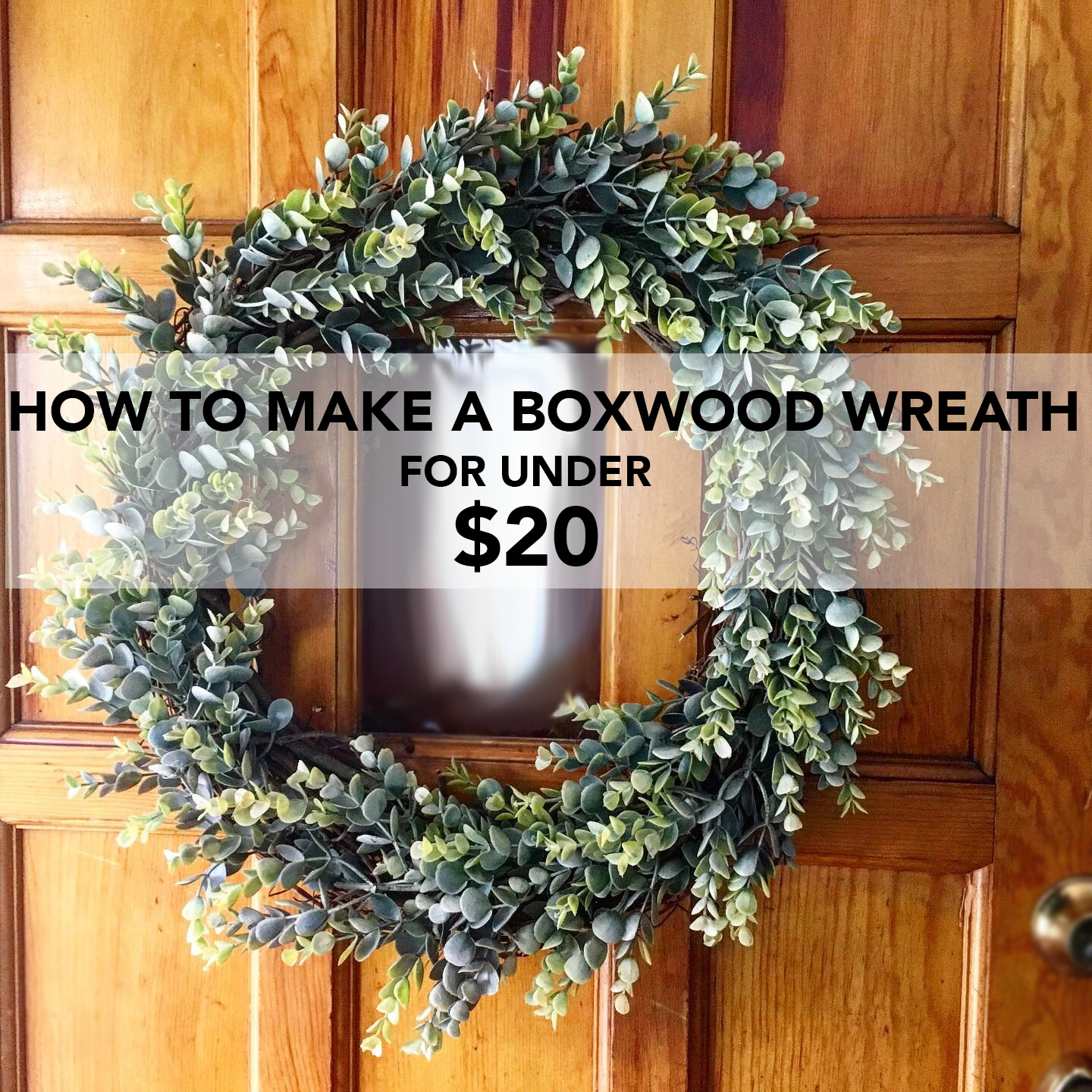 Here is our complete tutorial for How to make a Boxwood wreath for under $20.